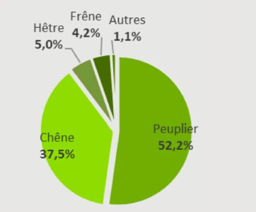 Consommation de bois rond par essence dans les scieries feuillues belges en2020(total:217.000 m³/an)