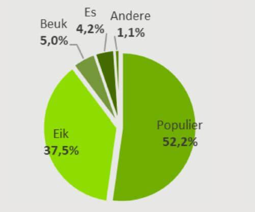 Rondhoutverbruik per soort voor de Belgische loofhoutzagerijen in 2020 (totaal 217.000 m³/jaar)